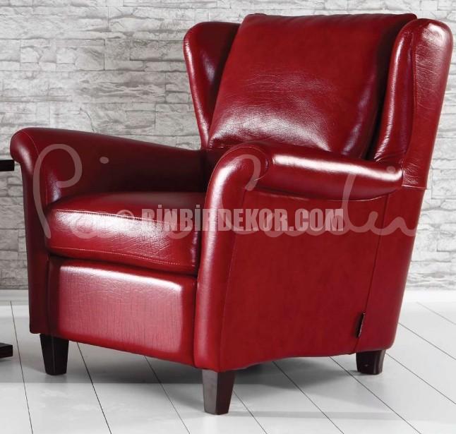 Pierre Cardin berjer koltuk modelleri