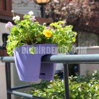 balkon saksı modelleri minigarden_8