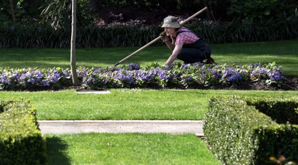 ağustosta bahçe bakımı_4