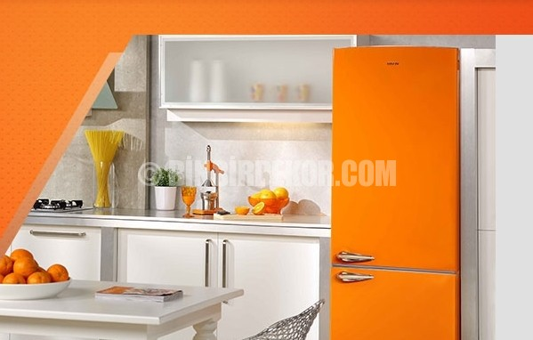 vestel renkli buzdolabı