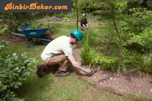 eylül ayı bahçe bakımı