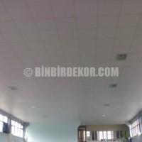 ... taşyünü asma tavan imalatı eldivan, taşyünü asma tavan