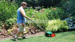 Eylül ayı bahçe ve çim bakımı nasıl yapılır ?…