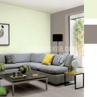 oturma odası duvar renkleri (10)
