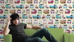 Pop Art İthal Duvar Kağıdı Modelleri