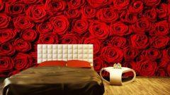 Yatak Başı Manzaralı Duvar Kağıdı Uygulamaları